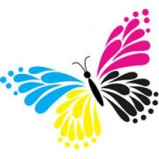tatoo5 - metulj barvni